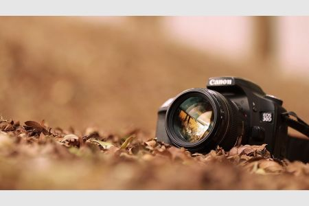 Программа обмена опытом по фотографии